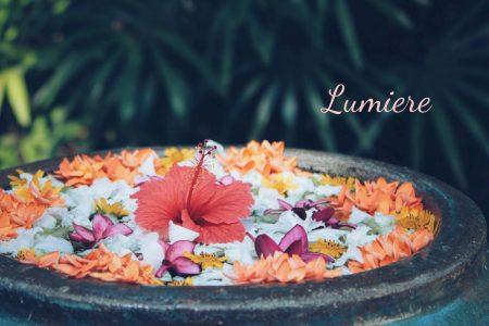 【募集中】女性の人生に美と潤いを与えるイベント~Lumiere♡ルミエール~